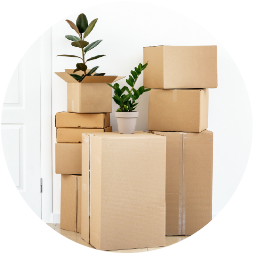 fetch_package